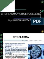 2da CLASE CITOPLASMA CITOESQUELETO.ppt
