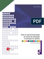 ANQ_Guia de operacionalização EFA JUNH 2009.pdf