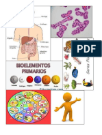 Biología.docx