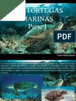 Carlos Michel Fumero - Las Tortugas Marinas, Parte I