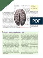 Biopsychology 1.1 1.4
