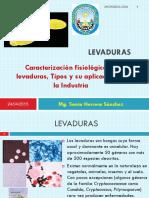 04-LEVADURAS