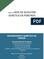 Metodos de Selección Genetica en Porcinos