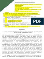 Cuestionario Enzimas y Membrana Plasmática