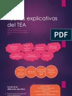 Teorías Explicativas Del TEA