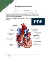 trabajo electrocardiograma.docx