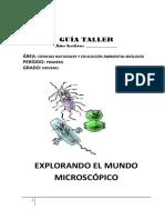GUÍA TALLER NOVENO.pdf