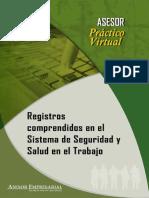 Registros Comprendidos en El Sistema Sst