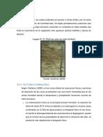 Informe-de-Edafologia-ultimo.docx