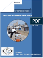 INFORME FINAL DE PRACTICAS.pdf