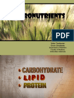 Macronutrients '09.ppt