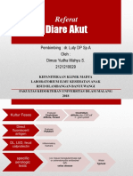 Referat DIARE.pptx