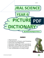 Picture Dictionary (Natural Science, Year 6)