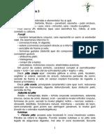 Ayurveda-3.pdf