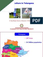 Telangana Agricalture_Presentation_1.pdf