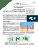 Guía 1 Circulacion - 7