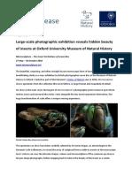 Microsculpture Levon Biss.pdf