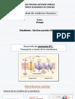 seminario exposicion.pptx [Autoguardado].pptx [Autoguardado].pptx