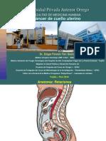 Cancer de Cuello Uterino 24.07.18