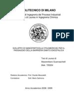 Tesi Sviluppo Nanopart x Bbe
