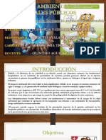 Gestión Ambiental en Hospitales Públicos - Copia
