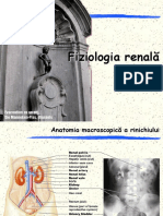 Renal-Functii renale.pdf