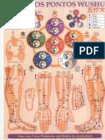 Mapas Acupuntura.pdf