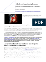 Air Pollution Particles and the Unborn Foetus