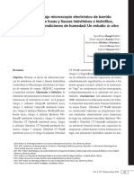 SFF de resina.pdf