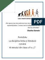 Prezentare Portofoliu