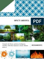 6AImpacto Ambiental_Iris Leyva
