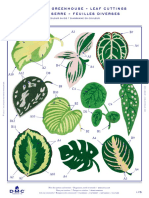 dmc patterns