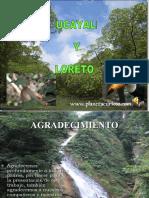 Danzas de La Selva Peruiana