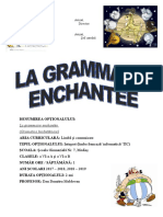 VI LA GRAMMAIRE - Programa Optional
