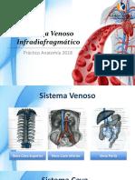 sistema venoso infradiafragmatico