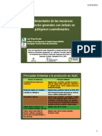 d1-01 Enfermedades de Bananos Enfasis en Cuarentenarios l Perez