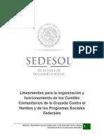 lineamientos_revisado