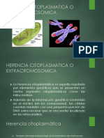 herencia extracromosomica