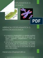 herencia extracromosomica