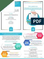 Díptico DIPLOMADO IFRS Revisado.pdf