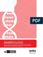 49-mapasprogreso_matematica_geometria.pdf