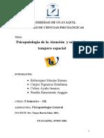 Exposicion Atencion (1)