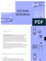SISTEMA SENSORIAL PART.1.pptx