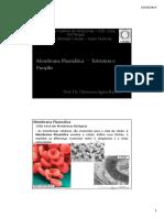 03 - Membrana Plasmática- Estrutura e Função 1.pdf