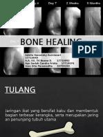 BONE HEALING LAPSUS ORTHO.pptx