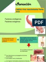 cicatrizacion-e-inflamacion-110407191556-phpapp02.ppt