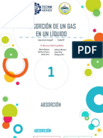 ABSORCION DE GAS EN UN LÍQUIDO.pdf