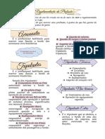 Resumo RPA.pdf