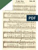 coro-sacro-30-meu-guia.pdf