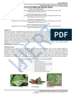 PLANT LEAF DISEASE DETECTION